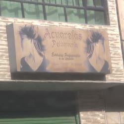 Acuarelas Peluqueria en Bogotá