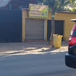 Abastible - Vicuña Rozas en Santiago