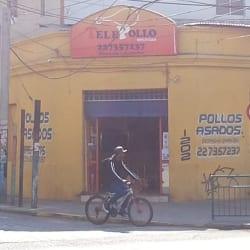 TelePollo - Vivaceta en Santiago