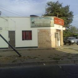 Carnes Loncomilla - Samuel Izquierdo / Salvador Gutierrez en Santiago