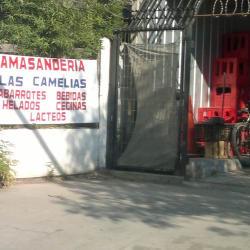 Amasandería Las Camelias - El Monte en Santiago