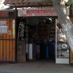 Bazar Las Gatitas - El Monte en Santiago