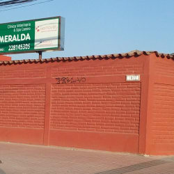 Clínica Veterinaria y Spa Canino Esmeralda - Talagante en Santiago
