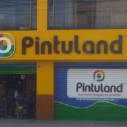 Pintuland en Bogotá