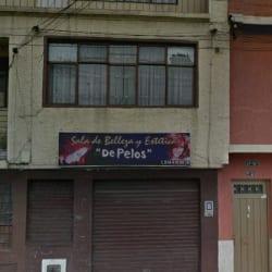 Salón De Belleza y Estética  De Pelos en Bogotá