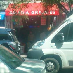 Galeria Grajales en Santiago