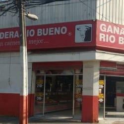 Ganadera Rio Bueno en Santiago