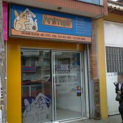 Animed en Bogotá