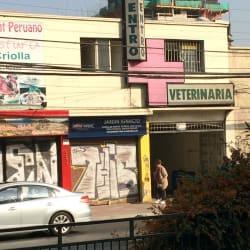 Jardinería Ignacio - Gran Avenida en Santiago