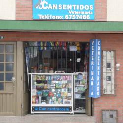 Can sentidos en Bogotá