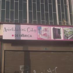 Amobladora Gaby en Bogotá