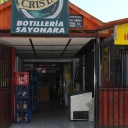 Botilleria Sayonara  en Santiago