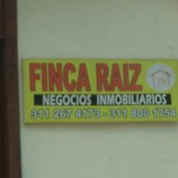 Finca Raíz Tenjo en Bogotá