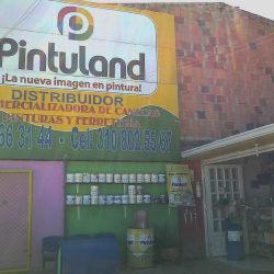 Pintuland Distribuidor (Cajica) en Bogotá
