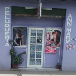 Peluquería Ann Mary  en Santiago