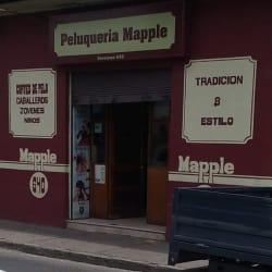 Peluquería Mapple  en Santiago