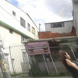 Vivero Luz en Bogotá