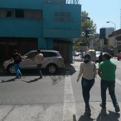 Muebles Arboleda en Santiago