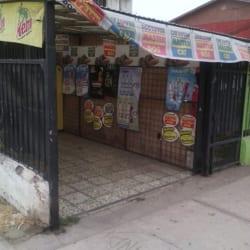 Comida de Mascotas Maskocan en Santiago