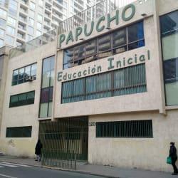 Jardín Infantil Papucho en Santiago