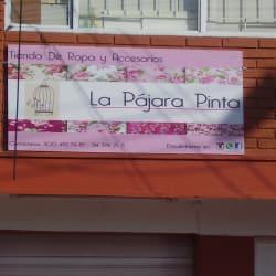 La Pajara Pinta Almacen de Ropa en Bogotá