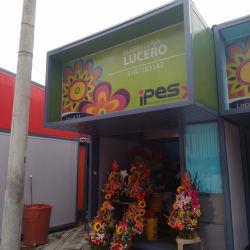 Floristeria Lucero en Bogotá