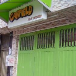 Garfield Dulce Tentacion  en Bogotá