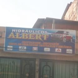 Hidráulicos Albert  en Bogotá
