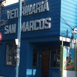 Veterinaria San Marcos - Gran Avenida en Santiago