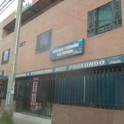 Cevicheria y Pescaderia Azul Profundo en Bogotá