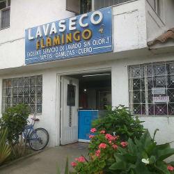 Lavaseco Flamingo en Bogotá
