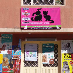 Como Perros y Gatos  en Bogotá