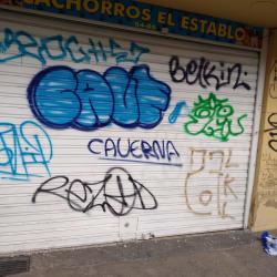 Cachorros el Establo en Bogotá