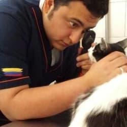 Canis Medicina Veterinaria en Bogotá