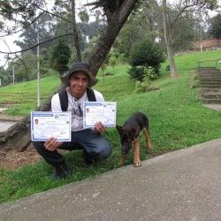 Family Dogs en Bogotá