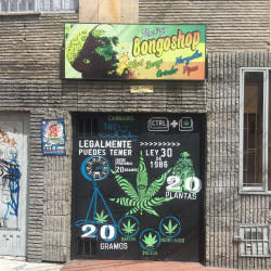 Bongo Shop en Bogotá