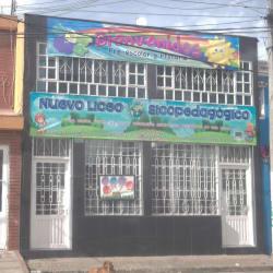 Nuevo Liceo Psicopedagógico en Bogotá