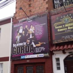 Teatro y Marionetas Ernesto Aronna  en Bogotá