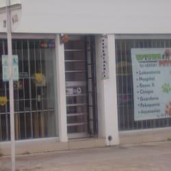 Uptwon pets en Bogotá