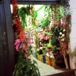 Flores San Miguel en Bogotá