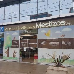 Mestizos Bazar en Santiago