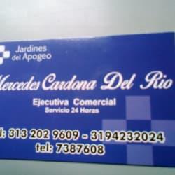 Jardines del Apogeo S.A. en Bogotá