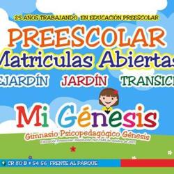 Gimnasio Psicopedagógico Génesis en Bogotá