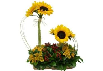 Arreglo floral Paraíso De Flores por solo $110.000