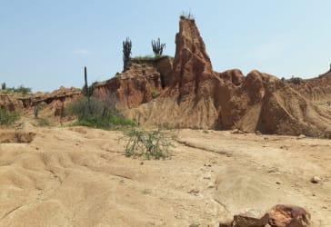 Recorrido por el Desierto de la Tatacoa por $150.000.