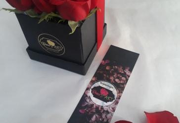 Caja de lujo Red Box Mini por solo $80.000
