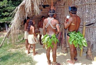 Visita y conoce el Amazonas por solo $849.000