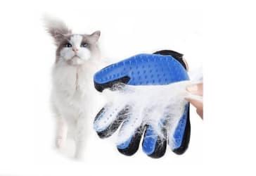 Guante para peinar gatos por solo $10.000 pagando con Mastercard