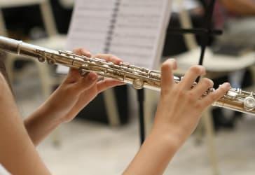 Pequeña orquesta musical por $280.000