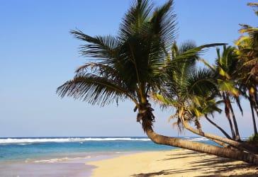 Conoce Punta cana con una persona especial por $6.870.000